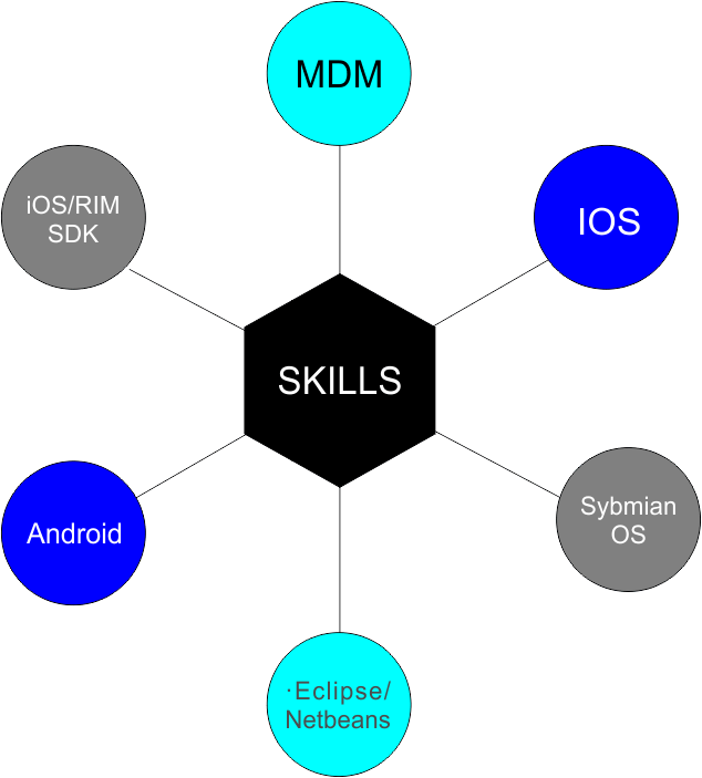 Mobile Solutions skills